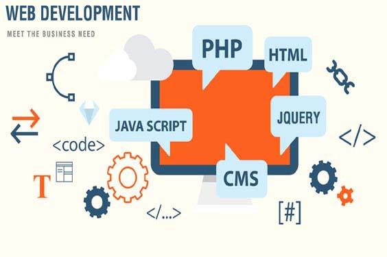 wwms web development
