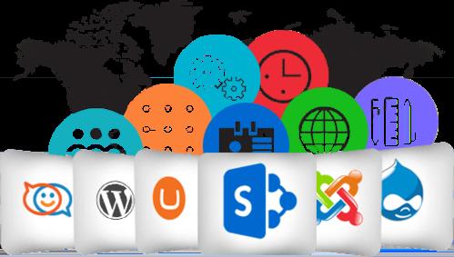wwms web development solutions